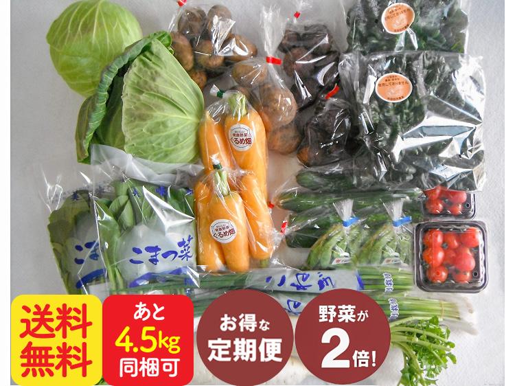 【定期便】ダブル九州野菜セット【10.5kg】