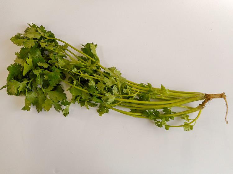 九州産コリアンダー(パクチー)(市場野菜)【0.1kg】