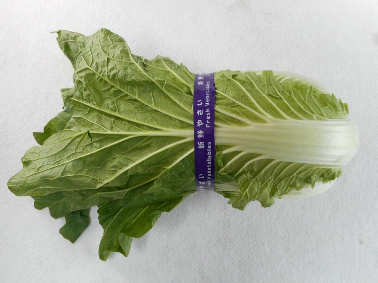 鹿児島県産白菜【3kg】