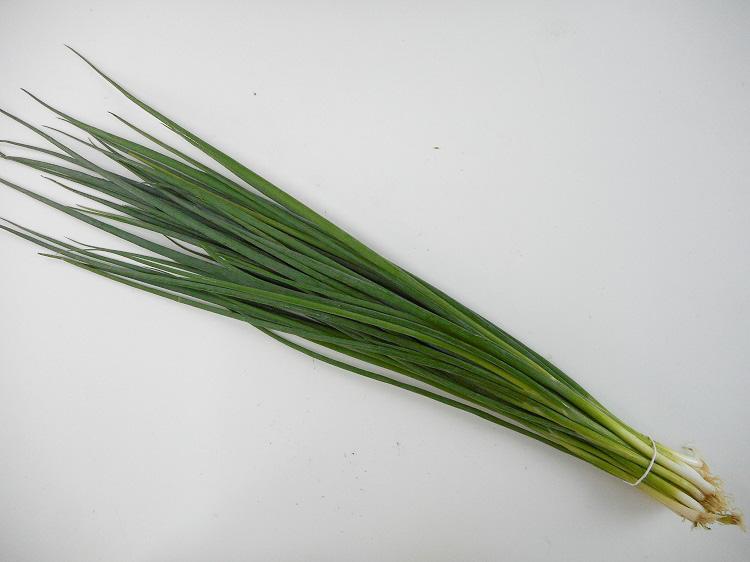 九州産こねぎ(万能ネギ)(市場野菜)【0.1kg】