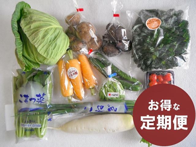 【定期便】九州野菜セット【5.5kg】