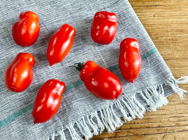 農薬不使用 イタリアントマト (6~7玉 250g~)【0.4kg】