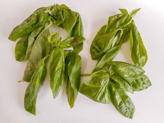 九州産バジル(市場野菜)【0.1kg】