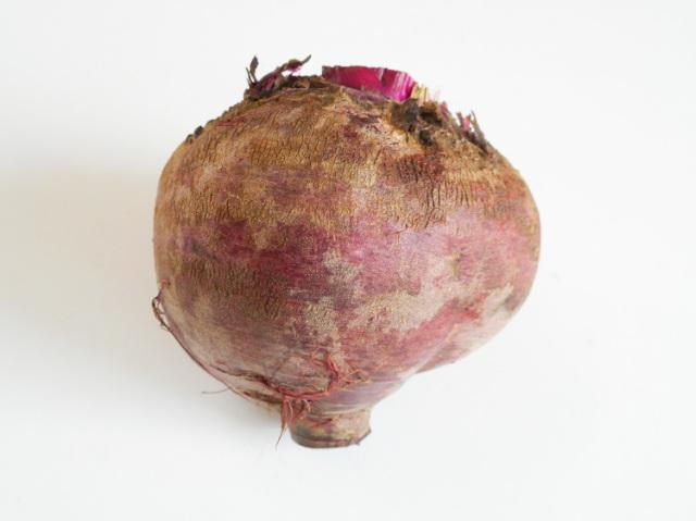 無農薬栽培ビーツ(大1個)【0.4kg】