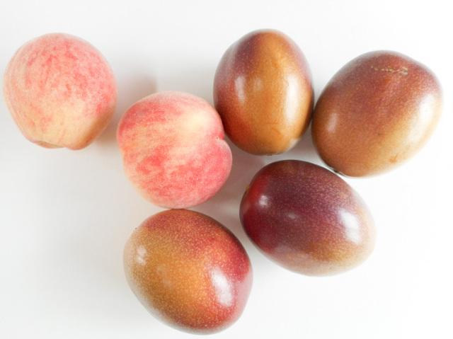 季節のフルーツセット【2kg】