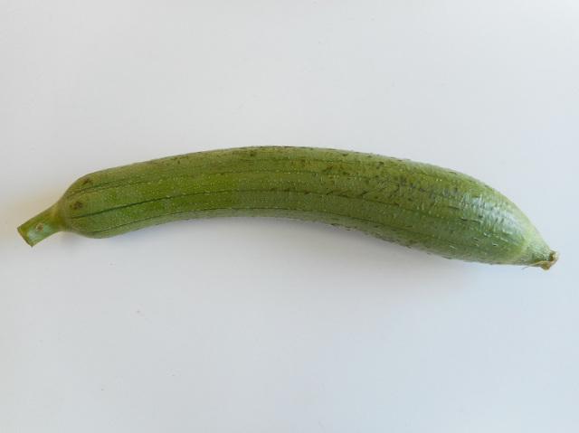 鹿児島県産 食べるヘチマ【0.5kg】