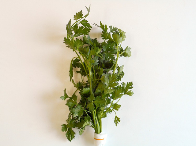 九州産イタリアンパセリ(市場野菜)【0.1kg】