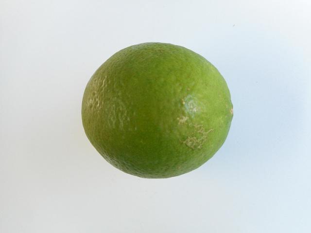 鹿児島県産レモン【0.1kg】