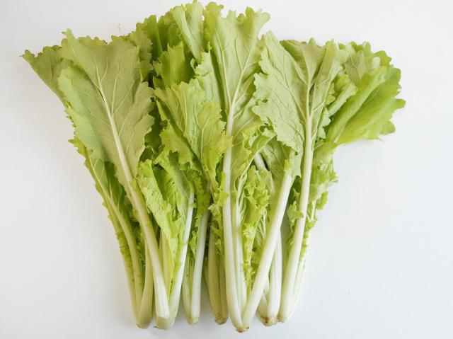 鹿児島県産山東菜(なっぱ)【0.2kg】