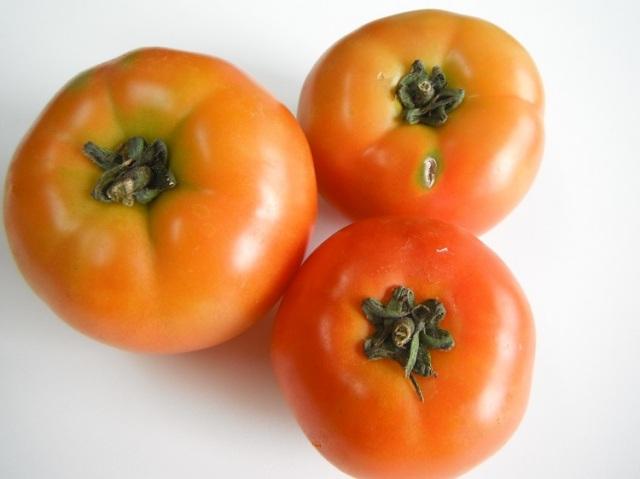 鹿児島県産トマト【0.6kg】