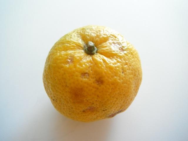 鹿児島県産ゆず【0.2kg】