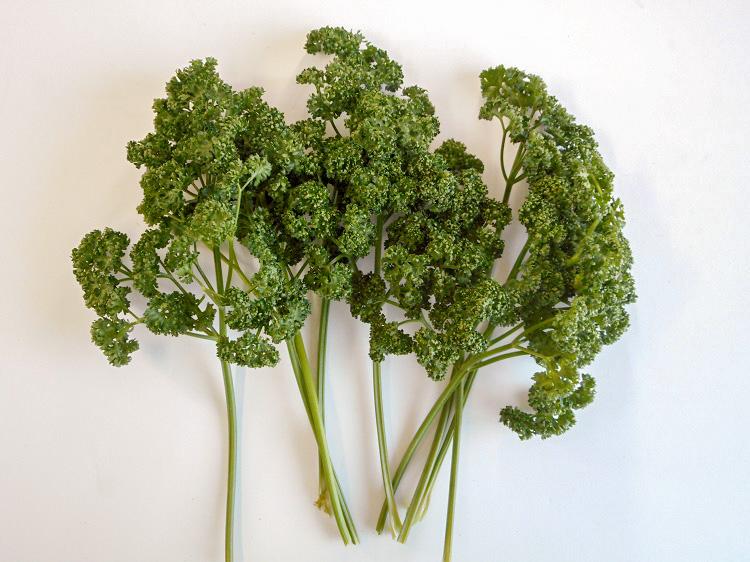 九州産パセリ30g(市場野菜)【0.1kg】