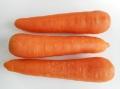 九州産にんじん(市場野菜)【0.6kg】