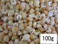 ナサリウスポリドス オレンジ【約1.0~1.5cm/100g】[メール便可-4袋まで]