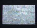 貝殻シート (オーストラリアアワビ) 【シートサイズ14cm×24cm 厚さ0.18mm-0.2mm 】