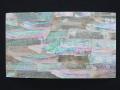 貝殻シート(キチョウガイ)【サイズ14cm×24cm 厚さ0.18mm-0.2mm 】