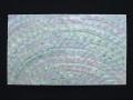 貝殻シート(ターボシェル)【シートサイズ14cm×24cm 厚さ0.18mm-0.2mm 】