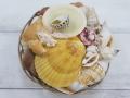貝殻詰め合わせ-カゴシェル-【カゴサイズ約10cm/1個】