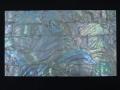 貝殻シート#1(フレッシュウォーターパール)【シートサイズ14cm×24cm 厚さ0.18mm-0.2mm 】