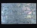 貝殻シート#2(フレッシュウォーターパール)【シートサイズ14cm×24cm 厚さ0.18mm-0.2mm 】