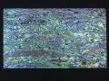 貝殻シート#3(ニュージーランドアバロン(パウアシェル))【シートサイズ14cm×24cm 厚さ0.18mm-0.2mm 】