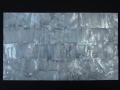 貝殻シート#18(ホワイトパール)【シートサイズ14cm×24cm 厚さ0.18mm-0.2mm 】