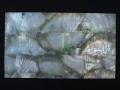 貝殻シート#21(ブラックリップ(クロチョウガイ))【シートサイズ14cm×24cm 厚さ0.18mm-0.2mm 】