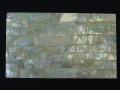 貝殻シート#24(ゴールドリップ(キチョウガイ))【シートサイズ14cm×24cm 厚さ0.18mm-0.2mm 】
