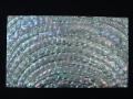 貝殻シート#25(ターバンシェル)【シートサイズ14cm×24cm 厚さ0.18mm-0.2mm 】