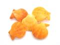 ヒオウギガイ両面-オレンジ-【約4〜5cm/5個入】[メール便可-6袋まで]