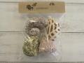 100円ヤドカリ用-NO.7-(Lサイズ/約5.0〜6.5cm)貝 貝殻 シェル ディスプレイ マリン ハンドメイド ディスプレイ