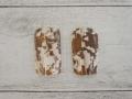 イモガイパーツ-3-(ニシキミナシ)【縦約4cm×横約2cm/2枚】[メール便可50袋まで]