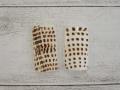 イモガイパーツ-5-(アンボンクロザメ)【縦約4cm×横約2cm/2枚】[メール便可50袋まで]