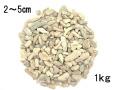 サンゴ砂#20(2〜5cm程度)【1kg】[メール便可-1袋まで]