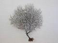 ウミウチワ-1021-【横約21.5cm/縦約24cm/1本】(現品)