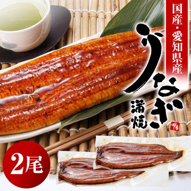 【送料無料】うなぎ蒲焼 2枚セット【国産】 これからの季節の人気の贈り物