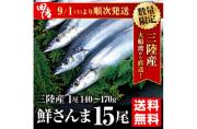 【送料無料】大船渡直送!鮮さんま15尾セット(1尾140〜170g以上)