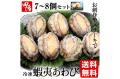 冷凍蝦夷あわび(生食用) 中国産 500g(7〜8個入)