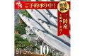 【送料無料】大船渡直送!鮮さんま10尾セット(1尾120〜140g以上)