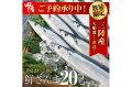【送料無料】大船渡直送!鮮さんま20尾セット(1尾120〜140g以上)