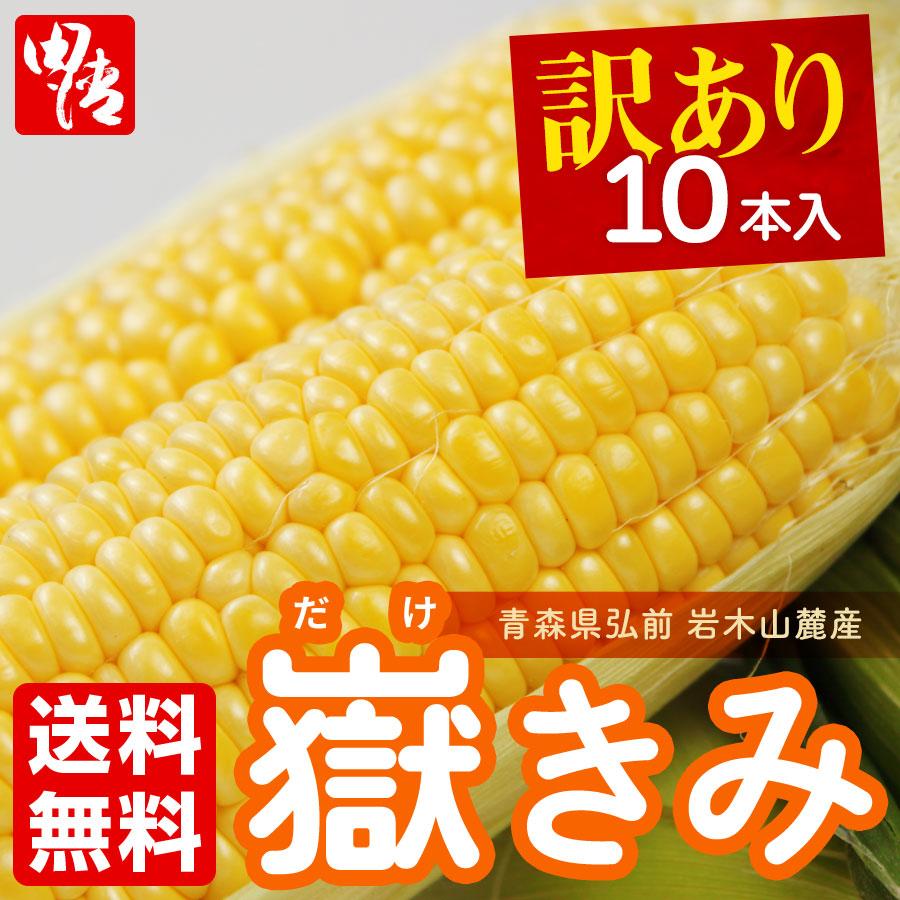 【訳あり】青森県産 嶽きみ2021 ラストチャンス!【送料無料】