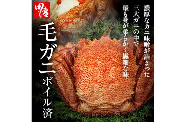 今なら便利なカニバサミ付き!北海道産毛ガニ 約600g【毛ガニ】【送料無料】【蟹】