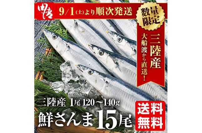 【送料無料】大船渡直送!鮮さんま15尾セット(1尾120〜140g以上)