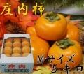 《贈答品に》 27年度山形県鶴岡産庄内柿 秀品 5kg (24玉以上)《好評予約受付中!!》