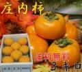 《ちょっとした贈り物に!!》山形県鶴岡産庄内柿 秀品 3kg (18玉以上) 《好評予約受付中!!》