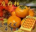 《お買い得品!》 山形県鶴岡産庄内柿 L玉 4kg (22~23玉) 《好評予約受付中!!》