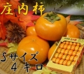 《お買い得品!》 山形県鶴岡産庄内柿 S玉 4kg (28〜30玉以上) 《好評予約受付中!!》