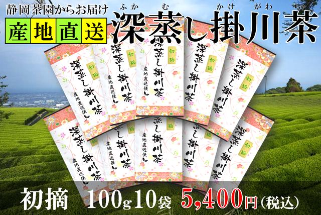 深蒸し掛川茶の初摘100g10袋セット