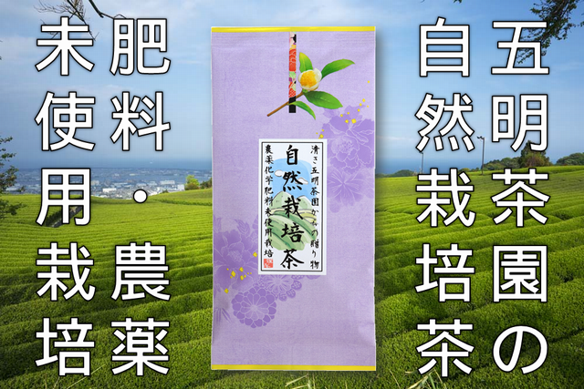 自然栽培茶 化学肥料と農薬未使用栽培100g