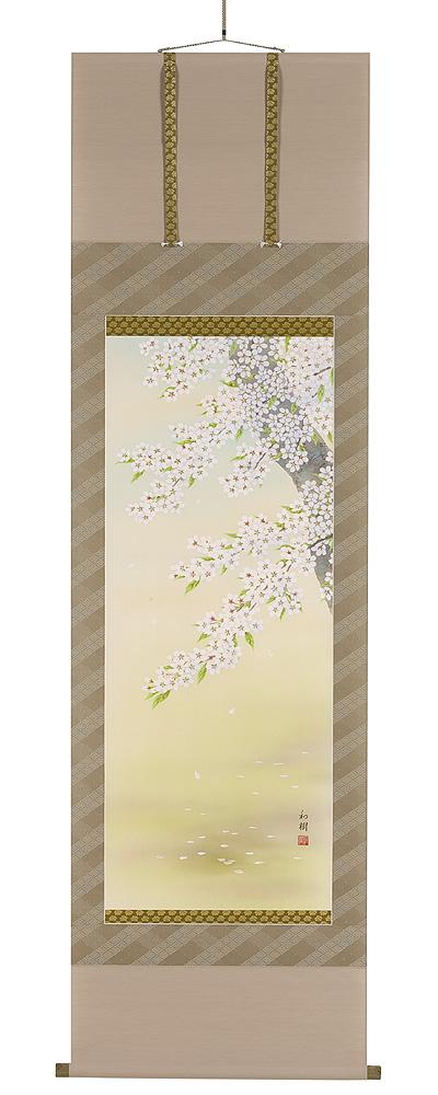 桜 橋谷和樹(直筆) 掛軸(掛け軸)